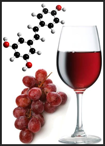 Resveratrol is an Antioxidant Found in Wines