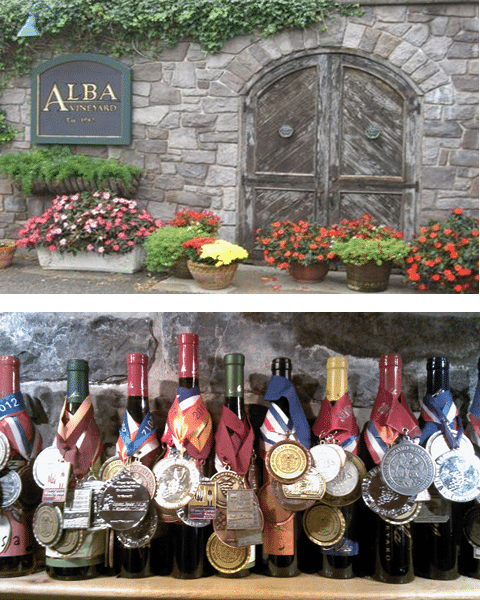 Alba New Jersey Winery